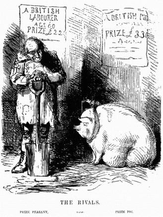 Paysan britannique : £2,20. Cochon britannique : 3,30£. Illustration non datée, Grande--Bretagne.