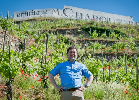 Michel Chapoutier dans ses vignes, juillet 2013.