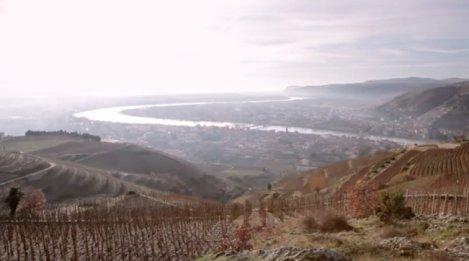 Un vignoble de la maison Chapoutier dans la vallée du Rhône.